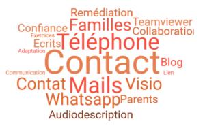 Nuage de mots décrivant les stratgies mises en place pendant le confinement (téléphone, mails, Familles, Visio, etc)